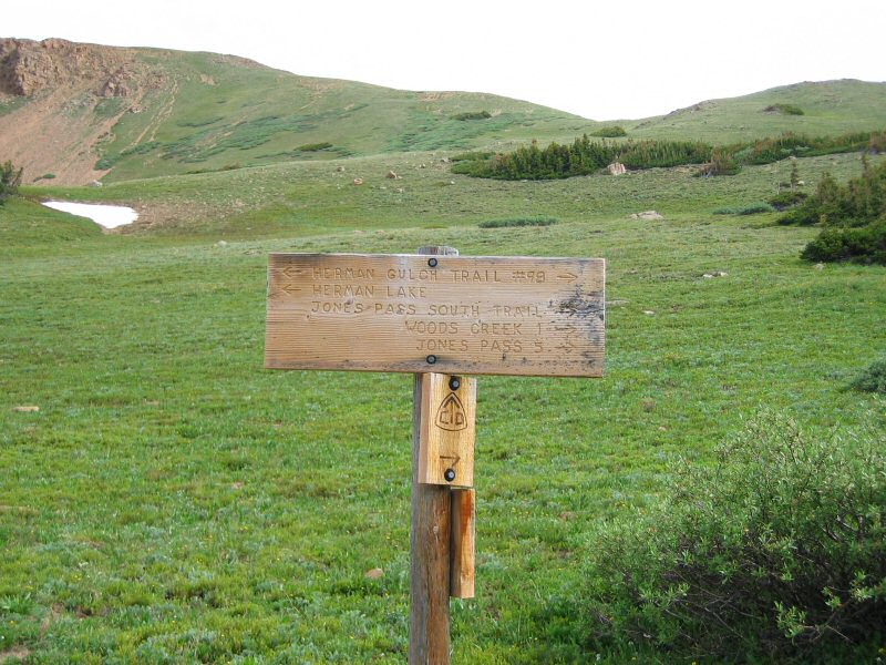 About three miles into the hike, the Continental Divide Trail splits off to the right towards Woods Creek and Jones Pass.