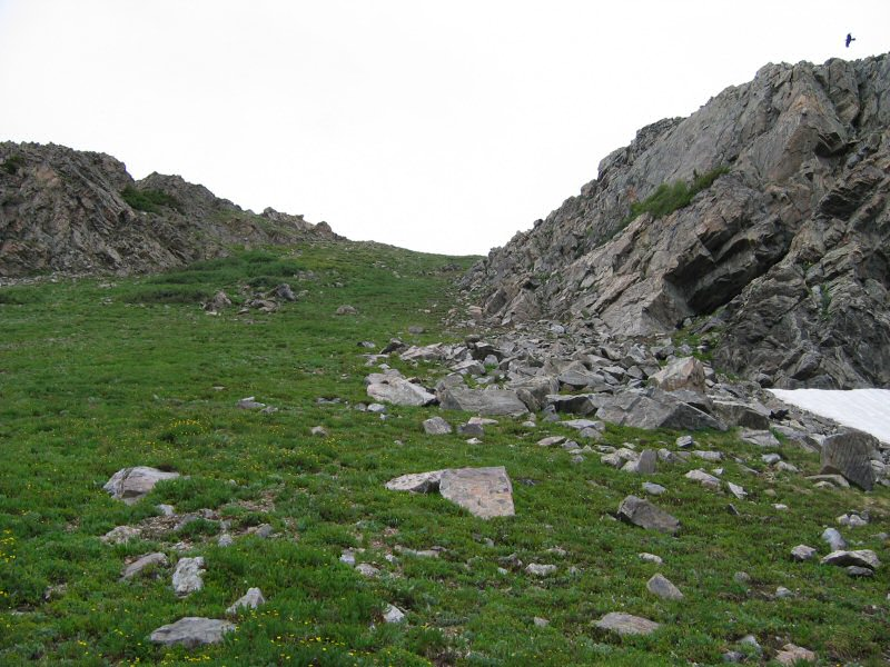 I came back down from the bench above the lake to take a break.  Here's what the gully I came down looks like.